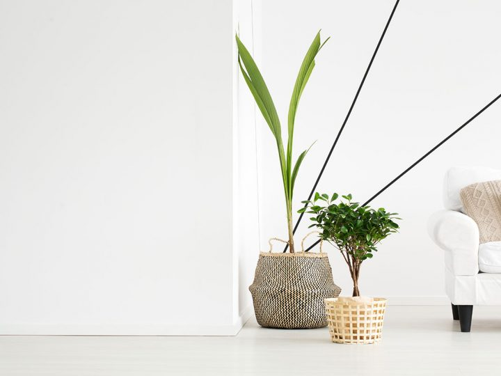 'FENG SHUI TIPS TO ENHANCE THE 'GOOD ENERGY' IN YOUR HOME